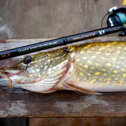 spinning-favorite-new-x1-2017-pike